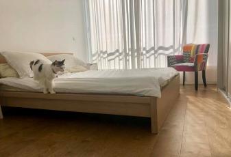 שיפוץ של חדר השינה